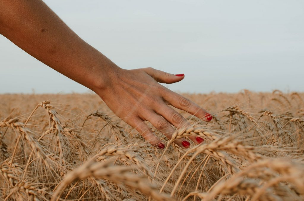 Spiritual Fruitfulness: Two Things Necessary